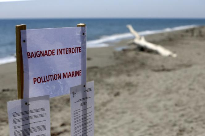 Aléria beach is subject to a bathing ban because of the maritime pollution that threatened it on June 12, 2021.