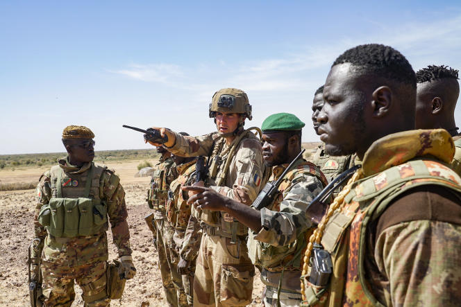 Malian soldiers around a French soldier from Operation Barkhane, in Gourma (Mali), in January 2021.